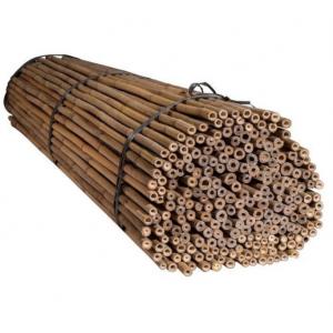 Тонкинский бамбук (для подвязки растений) Диаметр ствола 20-22 мм, L 2,1м